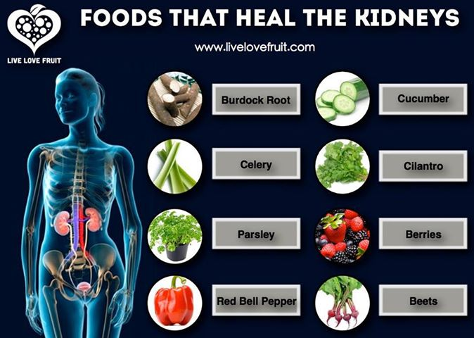 Best Foods To Heal The Kidneys