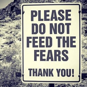 Fears pic